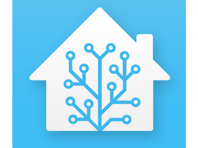 check_home-assistant